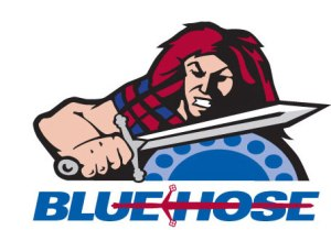 I'm not sure if this is the Presbyterian Blue Hose's real logo, but the alternative was a blue hose. Like a watering hose.