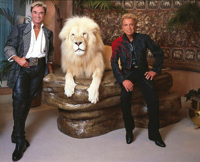 Roy, a white lion, and Siegfried pose in their living room (seriously) in a battle to determine whose blond haircut is the snazziest. The result: a three-way tie between the lion, Siegfried's jacket, and Roy's ginormous belt buckle. Let us know in the comment section what your favorite part of this photo is.