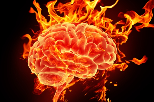 My brain's more badass than your brain! :P
