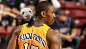 Panda Friend is soon to be one of the hottest selling jerseys. (Panda not included)